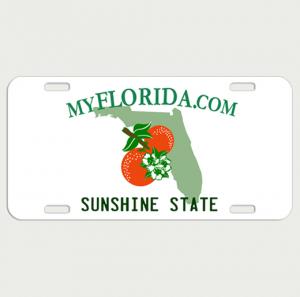 Florida License Plate Vanity Plate